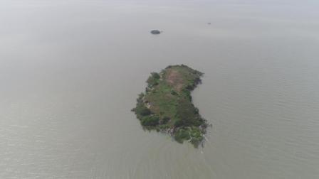太湖中的最后一片净土大竹岛