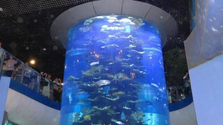 """世界上""""最大的鱼缸""""你见过鱼缸, 但一定没见过8层楼高的鱼缸!"""