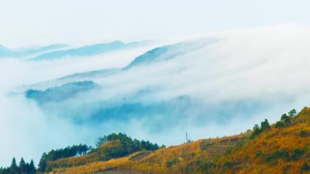 云海下的苗镇-谷陇, 美丽至极