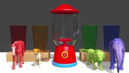 宝宝学颜色,小瓶子里装满小球,倒入大瓶中,出来小动物
