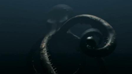 潜艇刚摆脱噬人鲨的追击,下一秒又进入大乌贼的领域,这下玩完了