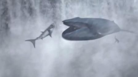 男子搏斗一群鲨鱼被活吞,不料一物降一物,最后的大赢家原来是鲲