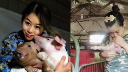 美女养猪年入百万 人工呼吸救活400头猪