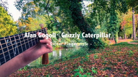 Alan Gogoll 《Grizzly Caterpillar》 吉他指弹 / Fingerstyle演奏 | aNueNue彩虹人