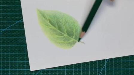 0基础学创意彩铅画 第一课 叶子基本型