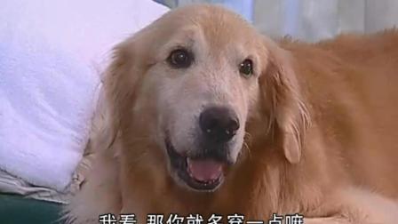 爱在旅途: 达伟让阿雅陪, 阿雅紧张问狗狗怎么办, 狗狗给她这办法