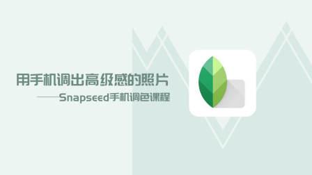 Snapseed手机调色教程介绍