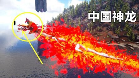 方舟生存进化洪荒归来 07 中国龙还会吐火一招秒杀一切