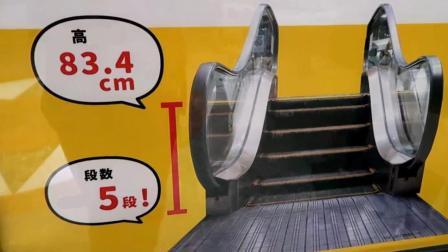 世界最短的电梯, 仅有5层台阶高, 为什么不走过去?