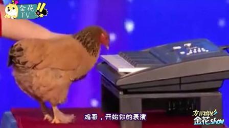 四川方言搞笑配音 第一季:爆笑四川方言动物配音        8.1
