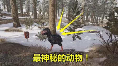 绝地求生: 雪地地图有一个怪物, 没人认识它, 全图就一只