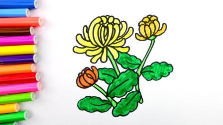 儿童简笔画 教你简单画菊花,儿童花卉简笔画基础