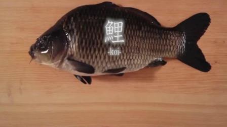 日本美食 师傅现场处理鲤鱼 看看他的刀工如何