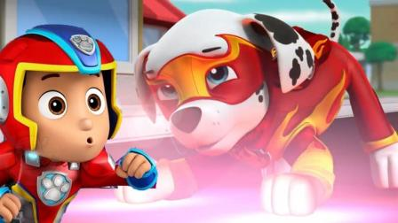 越看越厉害! 汪汪队的毛毛今天给大家演习了消防练习呢! 玩具故事