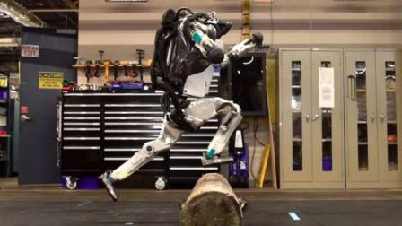 双足机器人, 可以应对各种地形, 穿越火焰没难度, 看着很魔性
