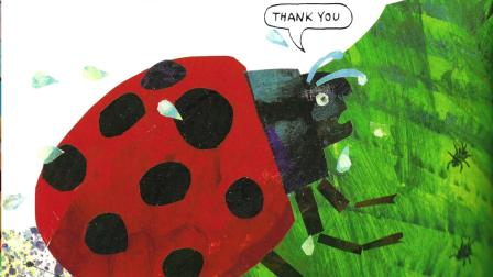 The Grouchy Ladybug | Can Cubs storytime