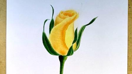 两分钟教你画一朵彩铅手绘玫瑰花, 你也来试试吧, 很简单!