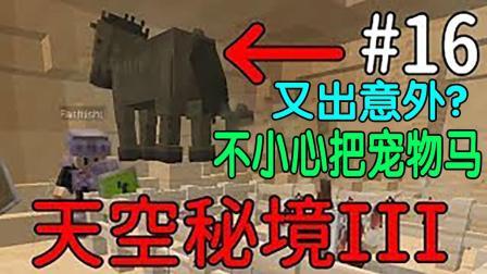 【波哥解说】MineCraft我的世界天空秘境3 空岛生存Ep16 又出意外? 不小心把宠物马