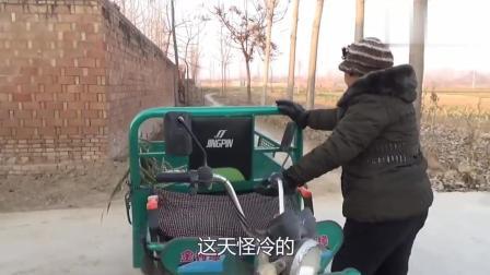 农村婆婆去地里买葱, 一大捆才十多块钱, 农民种地不容易