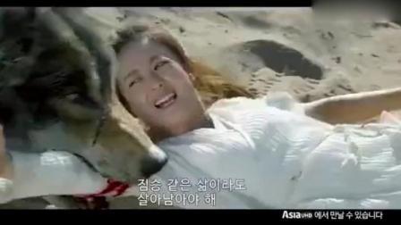 赵丽颖《楚乔传》在韩国的预告片, 太刺激了