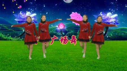 闽南经典十二大美女《双人舞》歌声甜美, 百听不厌, 舞步简单好看