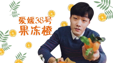 """为什么""""爱媛38号果冻橙""""这么火爆? 吃一口就明白了, 称为移动的果汁"""
