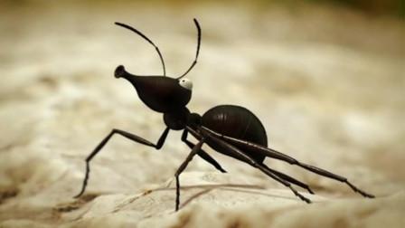 昆虫小世界, 人生大哲理之十一