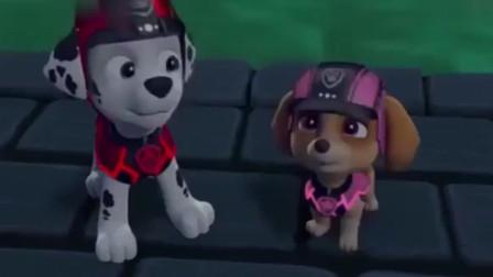 《汪汪队立大功》璐玛在水底找到了阿奇的狗牌, 太棒了!