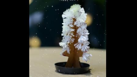 小时候, 圣诞节的气氛全靠这5毛钱的圣诞树撑起来