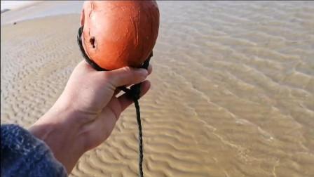 赶海篇: 小伙赶海被小螃蟹夹到手, 疼的嗷嗷叫, 看看是怎么回事