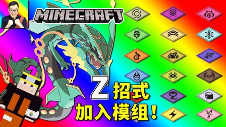 超进化加飞行Z的烈空坐无敌了! 模组全Z招式测试!