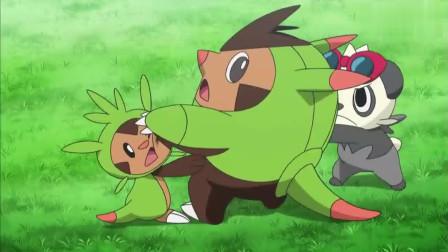 精灵宝可梦: 武藏、小次郎的神奇宝贝什么时候换了? 有点厉害!