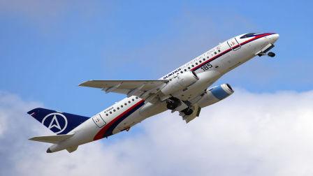 俄罗斯客机遭鸟群撞击最终安全降落在目的地