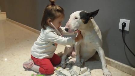 搞笑小女孩献爱心给狗狗看病