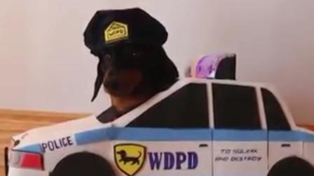 搞笑, 警察抓小偷