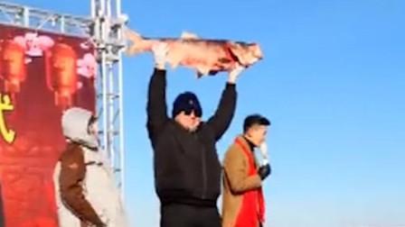 查干湖冬捕头鱼拍卖 40斤胖头鱼拍出99万元