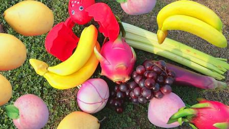 媛媛识果蔬 学习火龙果等7种水果蔬菜