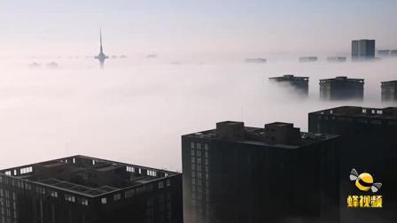 江苏盐城 简直不要太仙!城市冬日雾景宛如仙境