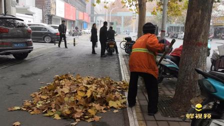 河南郑州 街头铺满落叶 环卫工起早摸黑打扫