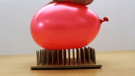 老外实验: 将气球与钉板相互挤压, 气球会炸吗? 结果很不可思议!