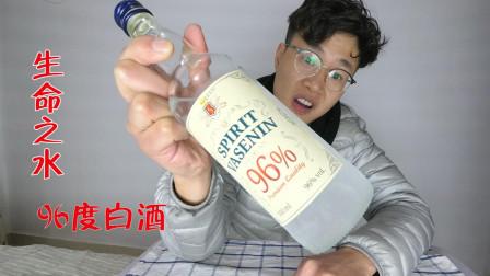 """试喝波兰进口""""生命之水"""", 酒精度96度, 一口下去是生命的味道"""