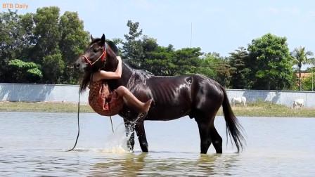 农村美女给马儿洗澡, 下一秒正面骑在马头上, 太疯狂了