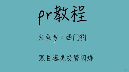 pr教程新手零基础Premiere视频教程黑白爆闪效果