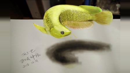 金龙鱼3D手绘, 祝看到这条鱼的您, 新年财源滚滚, 好运连连!