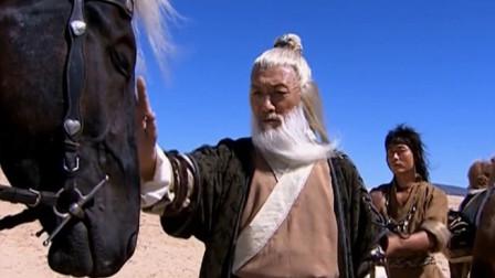 不愧是一匹名闻天下的神马 连这个武功高强的老头也骑不了它