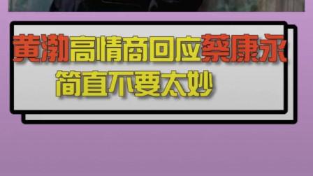 黄渤高情商怒怼蔡康永