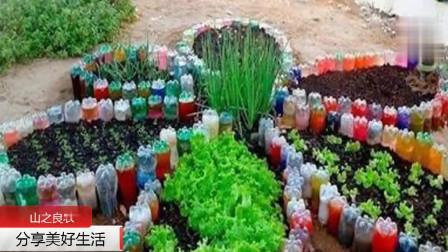 阳台种植100种创意方法大全, 妈妈再也不用担心我吃不到健康的蔬菜了