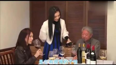 蔡澜谈法国红酒, 8000元的法国红酒到底好在哪里