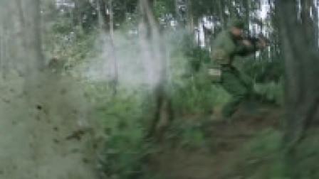 被网友误认为《芳华》的一部战争片, 2019年首部火爆全网的影片《父亲的军功章》