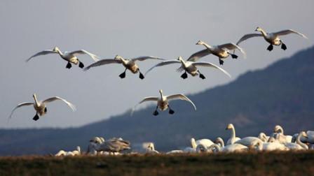 """中国最幸运的渔村: 靠从天而降的""""财富""""发财, 关键旅游还免费!"""